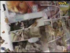 《第八铜人OL》宣传视频