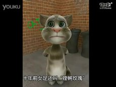 会说话的汤姆猫——会说话的汤姆猫大骂国足