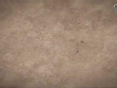 DOTA新作《黎明之门》首曝视频