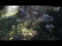 《本影》新演示公布 展示游戏自然环境