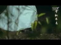 《仙侠世界2·剑逍遥》风小筝开年新曲MV首播