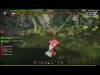 《怪物猎人OL》挑战指导视频