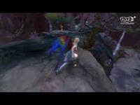 《激战2》金刚鹦鹉翅膀背包和滑翔机