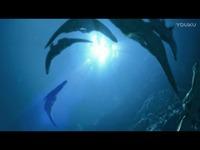 怪物猎人3开场CG 预告片