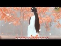 樱花树下的约定MV-MC理仁