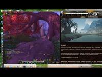 魔兽世界Cosplay:希尔瓦娜斯与圣骑挑战套装