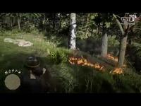 《荒野大镖客2》《GTA5》画面对比|奇游加速器