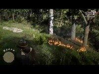 《荒野大镖客2》《GTA5》画面对比 奇游加速器